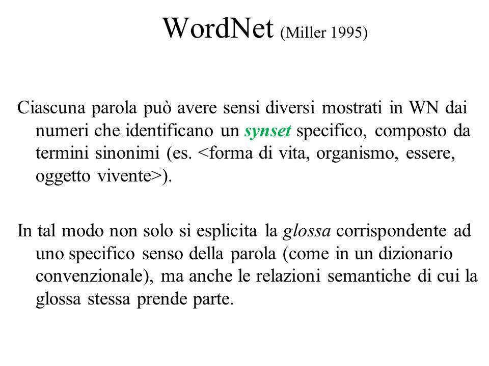 WordNet (Miller 1995) Ciascuna parola può avere sensi diversi mostrati in WN dai numeri che identificano un synset specifico, composto da termini sinonimi (es.