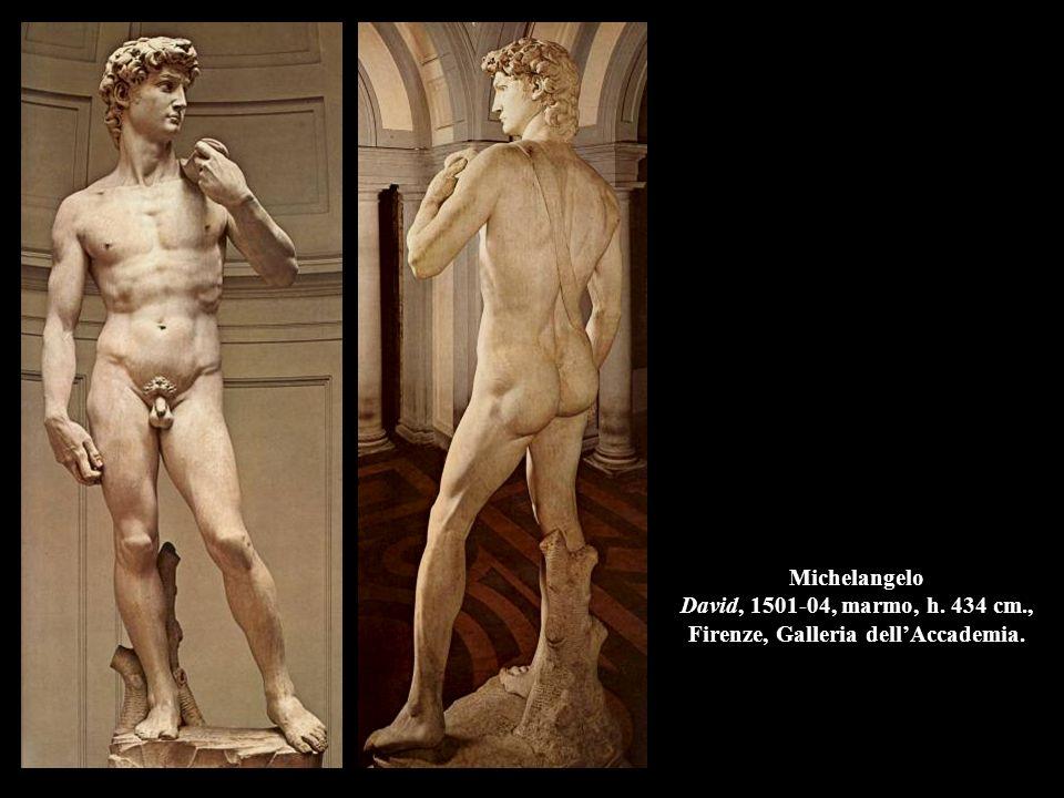 Michelangelo David, 1501-04, marmo, h. 434 cm., Firenze, Galleria dell'Accademia.