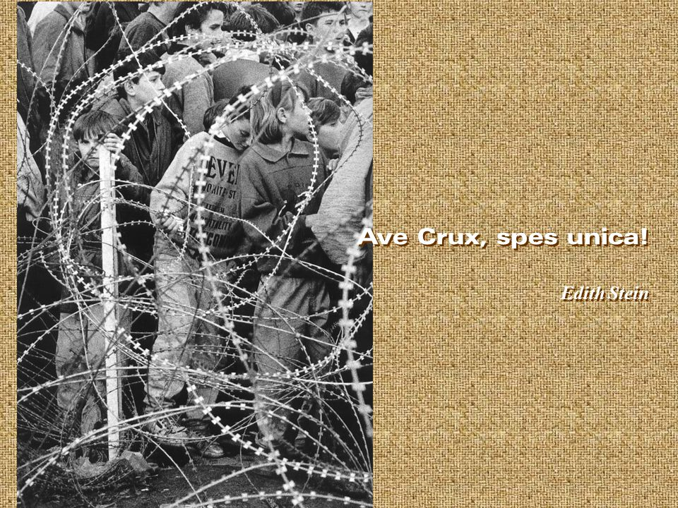 Ave Crux, spes unica! Edith Stein