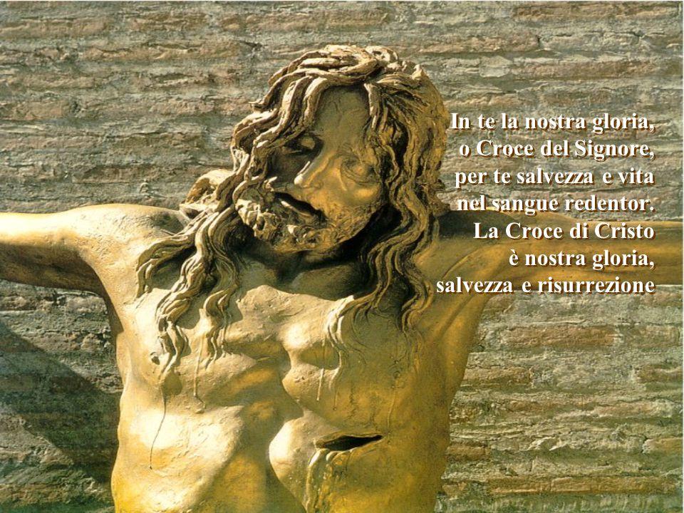 In te la nostra gloria, o Croce del Signore, per te salvezza e vita nel sangue redentor.