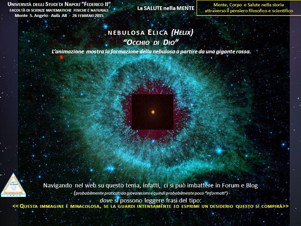 L'animazione mostra la formazione della nebulosa a partire da una gigante rossa. Navigando nel web su questo tema, infatti, ci si può imbattere in For