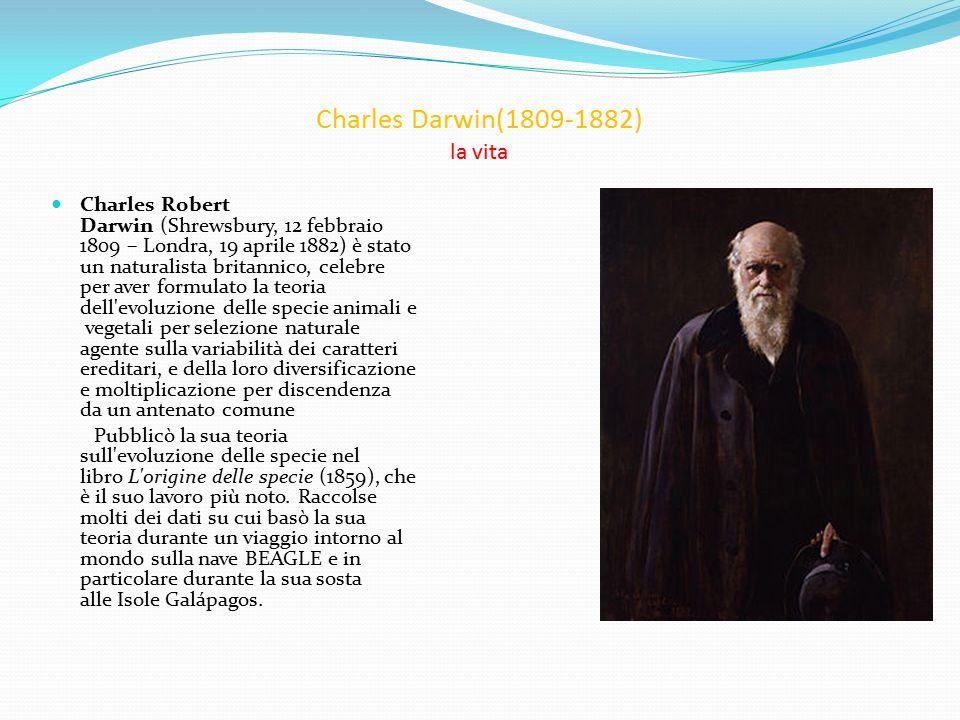 Charles Darwin(1809-1882) la vita Charles Robert Darwin (Shrewsbury, 12 febbraio 1809 – Londra, 19 aprile 1882) è stato un naturalista britannico, celebre per aver formulato la teoria dell evoluzione delle specie animali e vegetali per selezione naturale agente sulla variabilità dei caratteri ereditari, e della loro diversificazione e moltiplicazione per discendenza da un antenato comune Pubblicò la sua teoria sull evoluzione delle specie nel libro L origine delle specie (1859), che è il suo lavoro più noto.