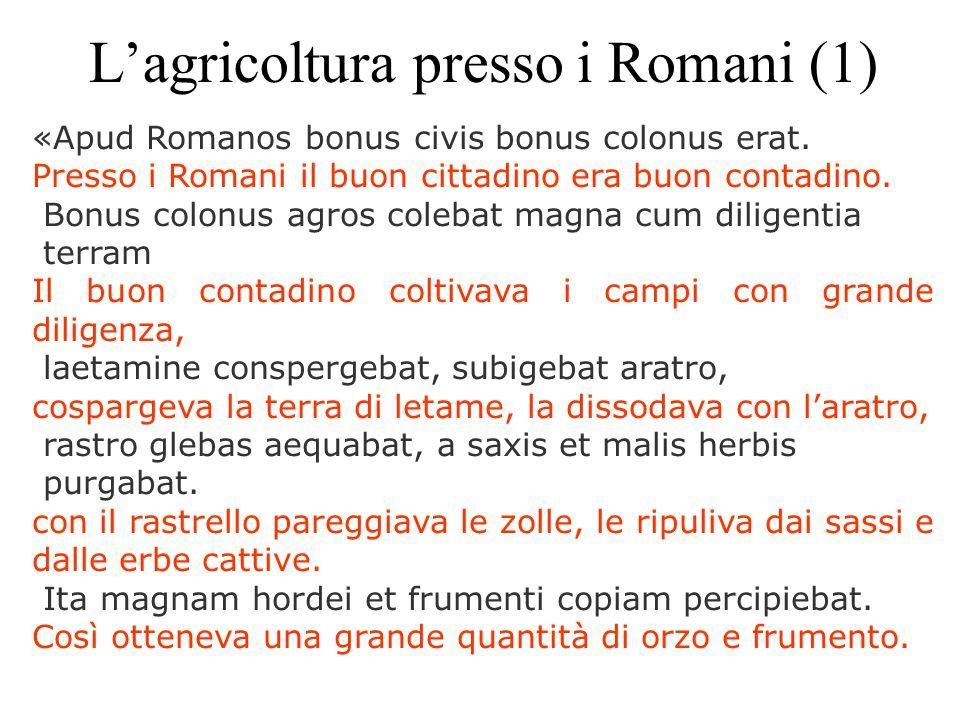 L'agricoltura presso i Romani (1) «Apud Romanos bonus civis bonus colonus erat. Presso i Romani il buon cittadino era buon contadino. Bonus colonus ag