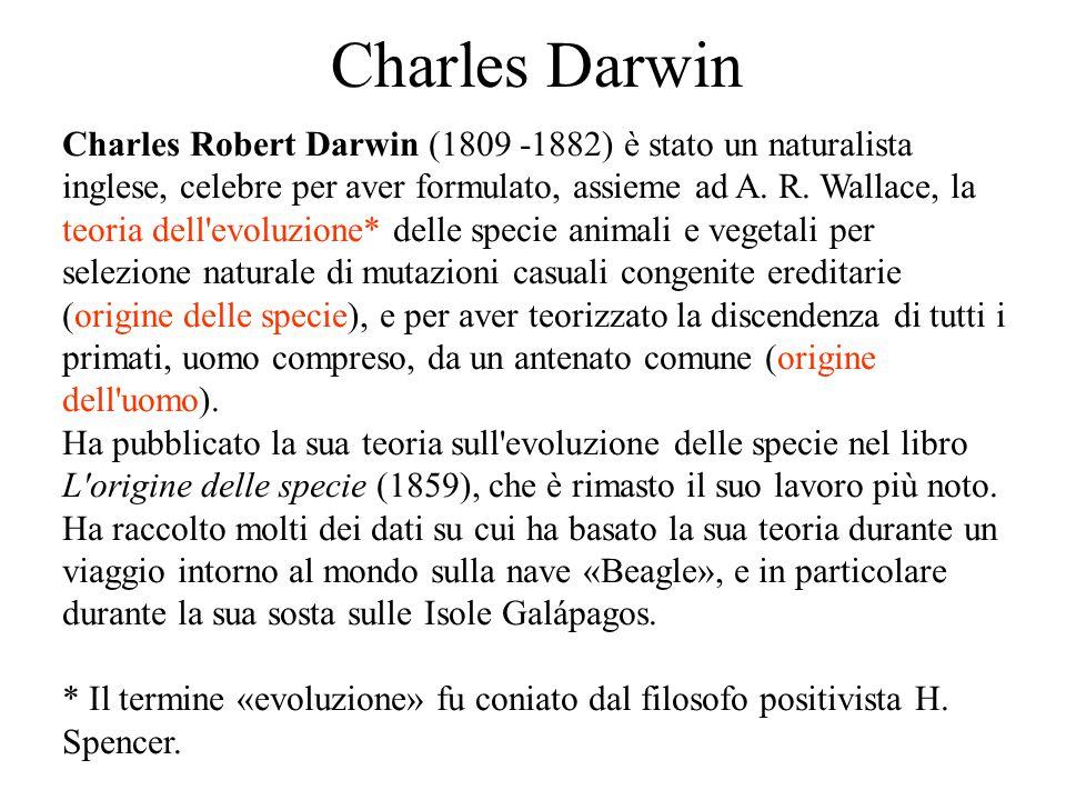 Charles Darwin Charles Robert Darwin (1809 -1882) è stato un naturalista inglese, celebre per aver formulato, assieme ad A. R. Wallace, la teoria dell