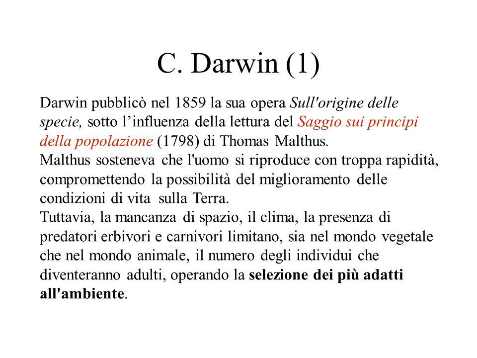 C. Darwin (1) Darwin pubblicò nel 1859 la sua opera Sull'origine delle specie, sotto l'influenza della lettura del Saggio sui principi della popolazio