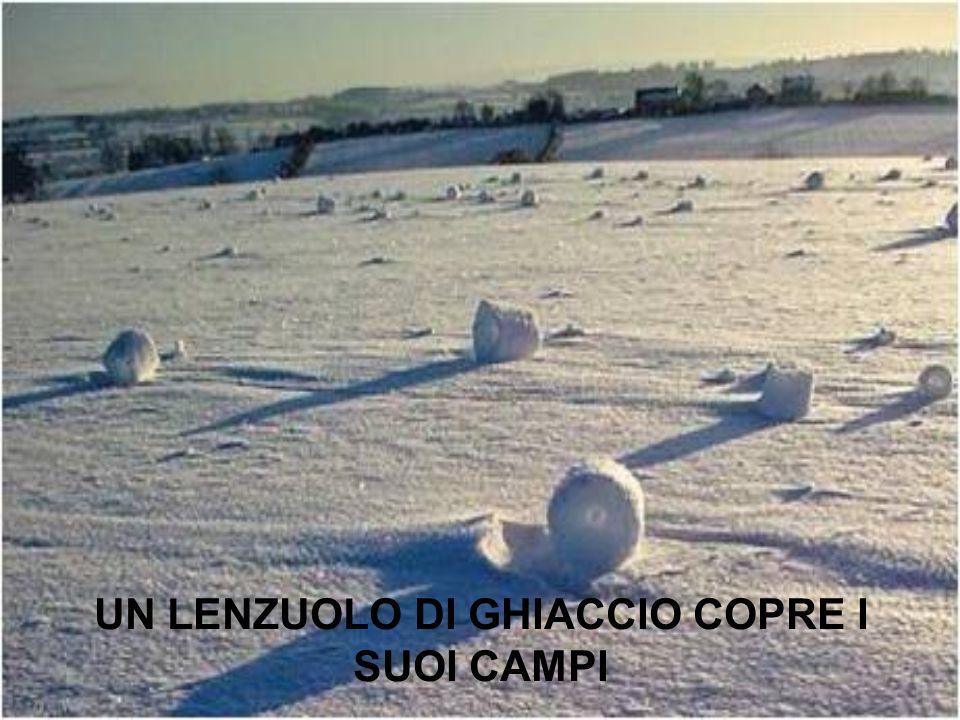 UN LENZUOLO DI GHIACCIO COPRE I SUOI CAMPI