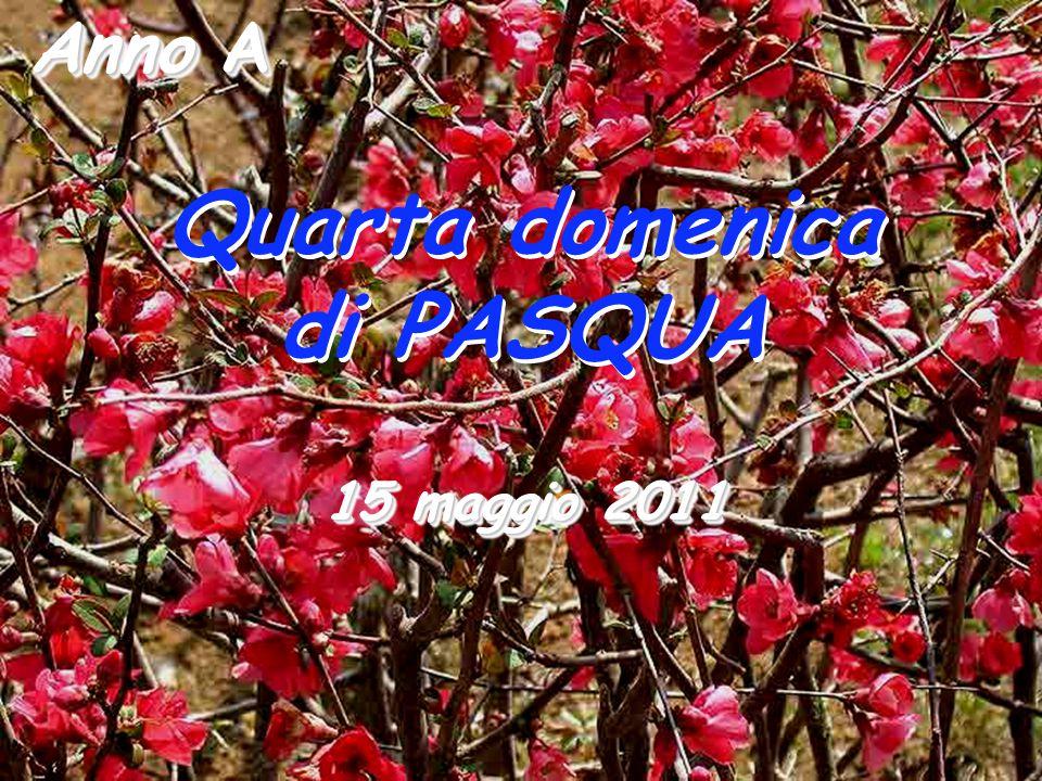 Anno A Quarta domenica di PASQUA Quarta domenica di PASQUA 15 maggio 2011
