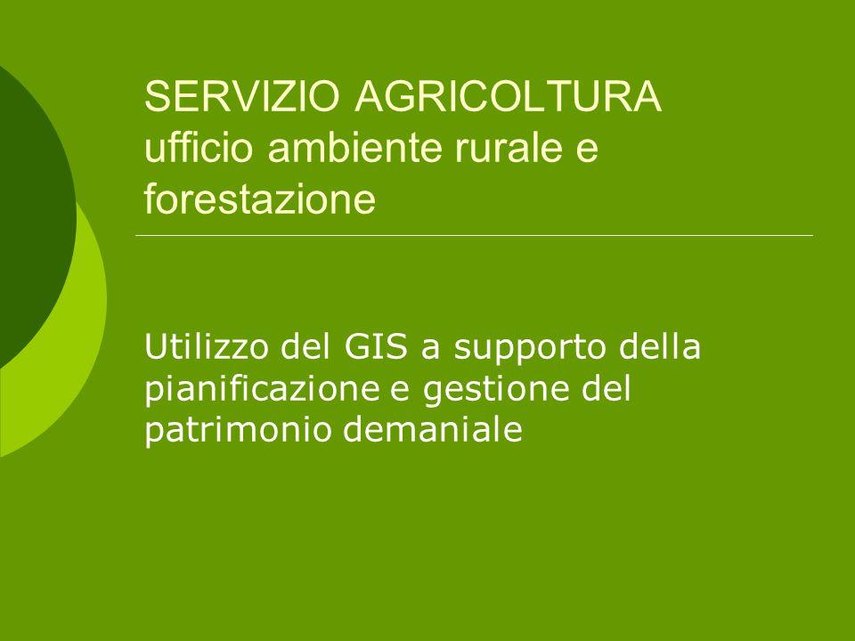 SERVIZIO AGRICOLTURA ufficio ambiente rurale e forestazione Utilizzo del GIS a supporto della pianificazione e gestione del patrimonio demaniale