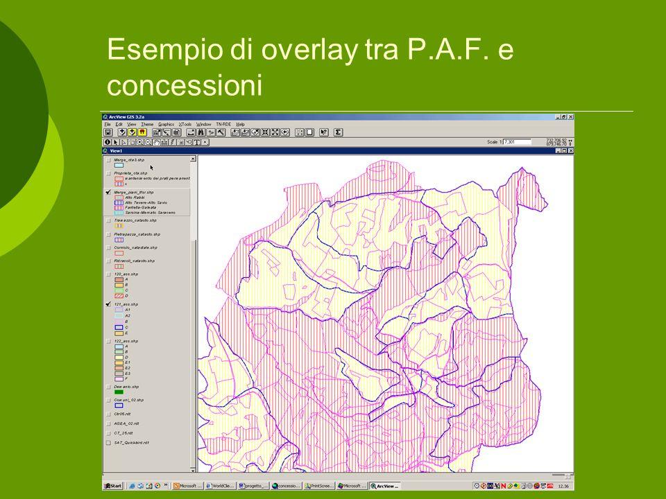 Esempio di overlay tra P.A.F. e concessioni