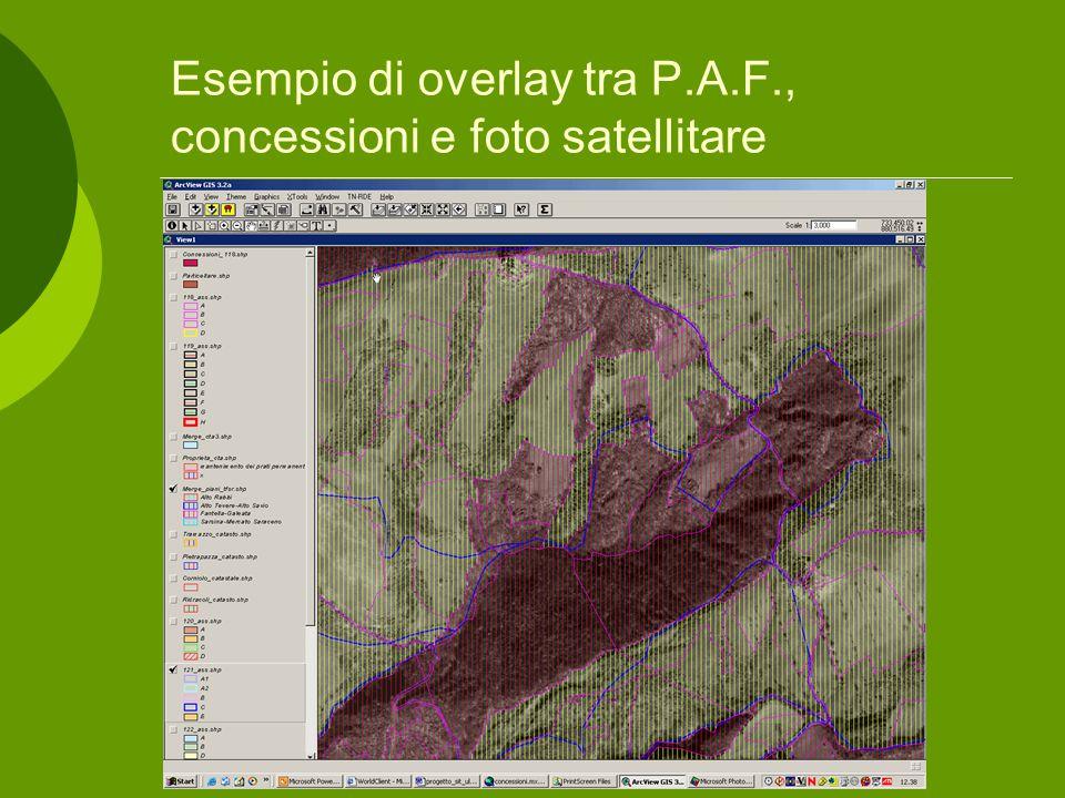 Esempio di overlay tra P.A.F., concessioni e foto satellitare
