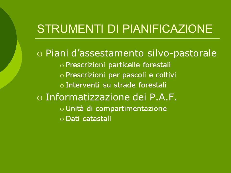 Piani d'assestamento forestale