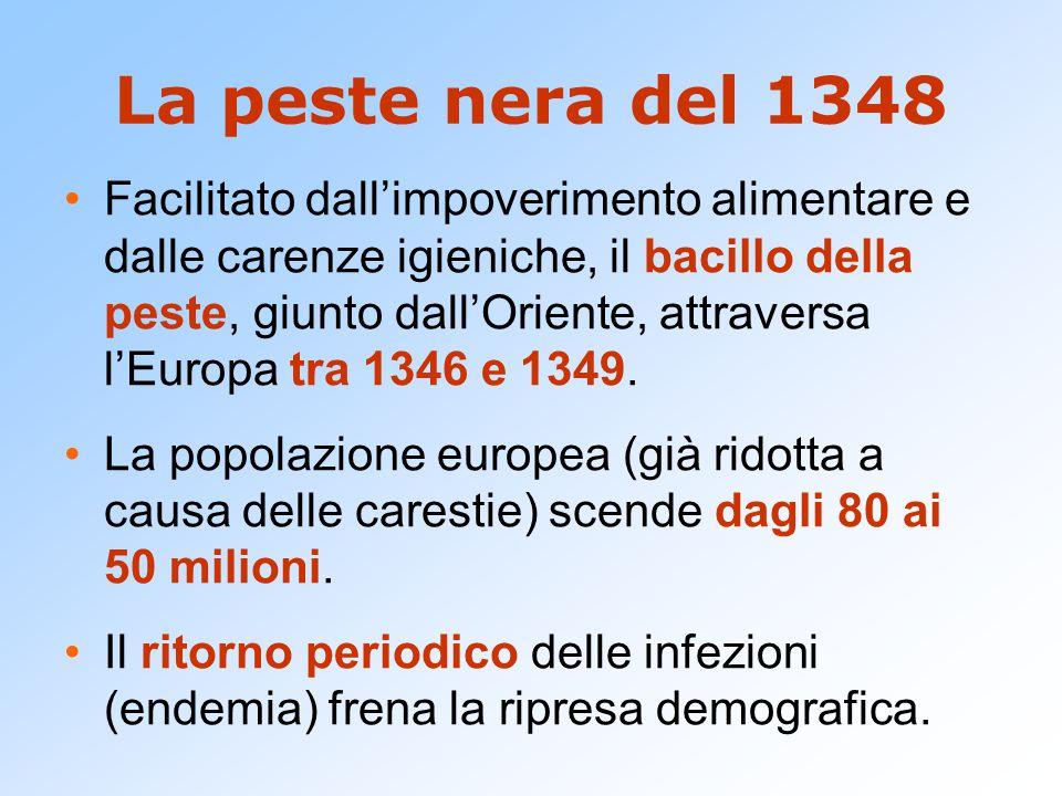 La peste nera del 1348 Facilitato dall'impoverimento alimentare e dalle carenze igieniche, il bacillo della peste, giunto dall'Oriente, attraversa l'E