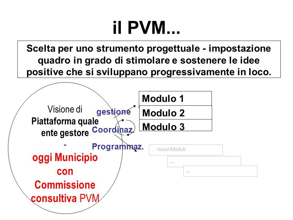 il PVM... Scelta per uno strumento progettuale - impostazione quadro in grado di stimolare e sostenere le idee positive che si sviluppano progressivam