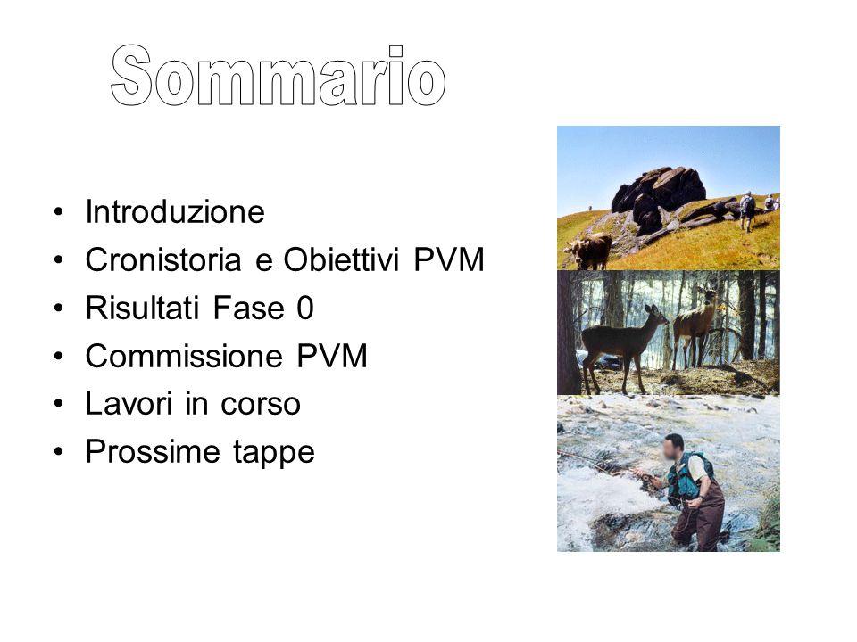 Introduzione Cronistoria e Obiettivi PVM Risultati Fase 0 Commissione PVM Lavori in corso Prossime tappe