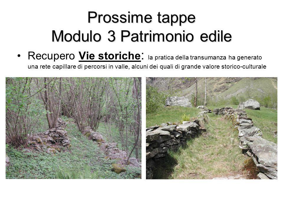 Prossime tappe Modulo 3 Patrimonio edile Recupero Vie storiche : la pratica della transumanza ha generato una rete capillare di percorsi in valle, alcuni dei quali di grande valore storico-culturale