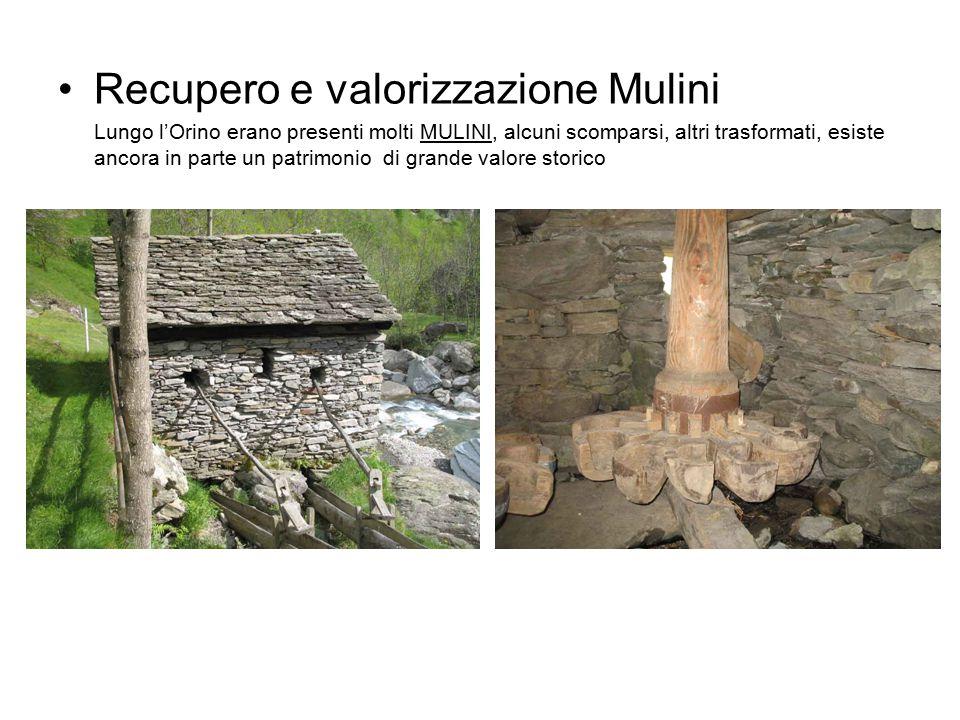 Recupero e valorizzazione Mulini Lungo l'Orino erano presenti molti MULINI, alcuni scomparsi, altri trasformati, esiste ancora in parte un patrimonio di grande valore storico