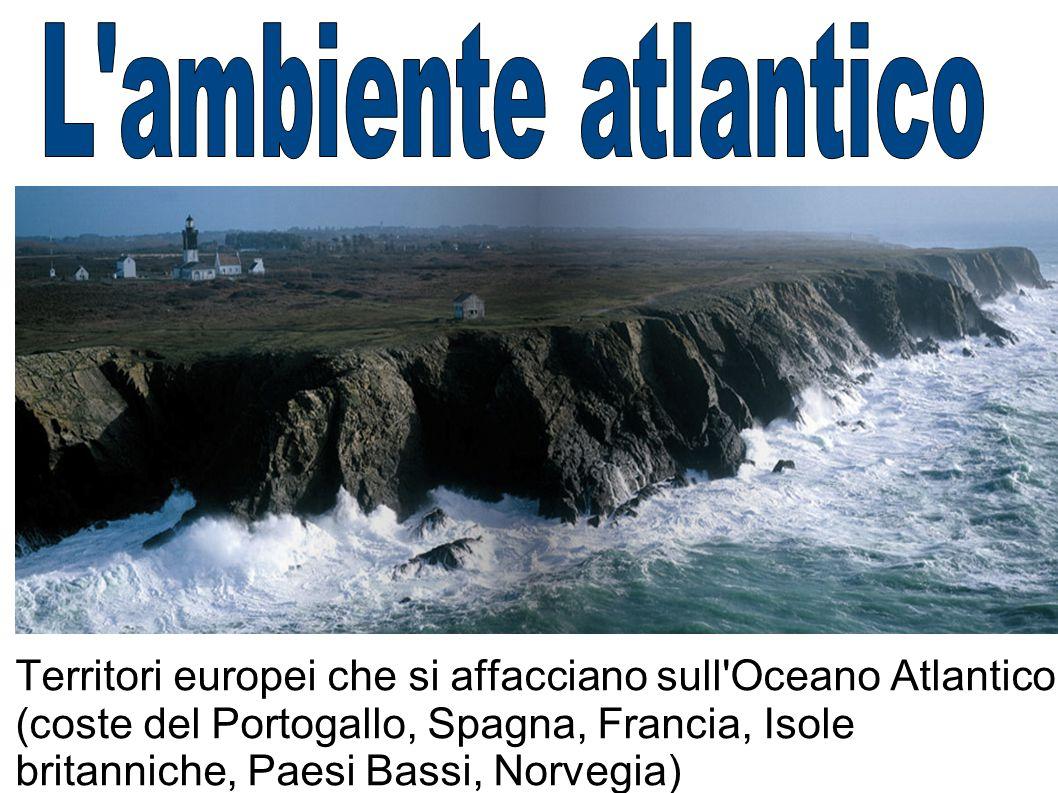 Territori europei che si affacciano sull'Oceano Atlantico (coste del Portogallo, Spagna, Francia, Isole britanniche, Paesi Bassi, Norvegia)