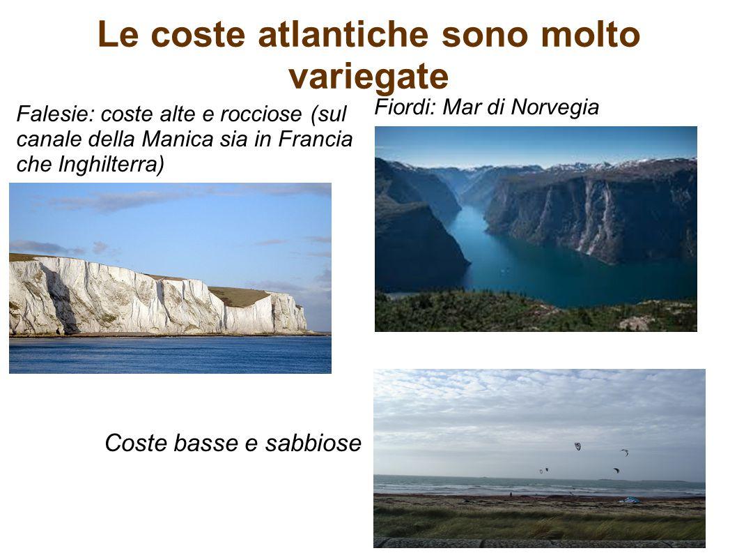 Le coste atlantiche sono molto variegate Falesie: coste alte e rocciose (sul canale della Manica sia in Francia che Inghilterra) Coste basse e sabbios