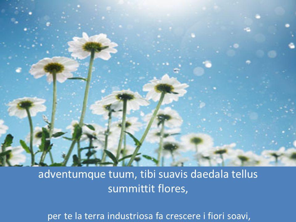 adventumque tuum, tibi suavis daedala tellus summittit flores, per te la terra industriosa fa crescere i fiori soavi,