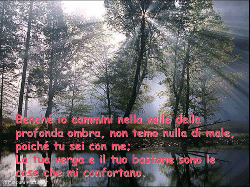 Benché io cammini nella valle della profonda ombra, non temo nulla di male, poiché tu sei con me; La tua verga e il tuo bastone sono le cose che mi co