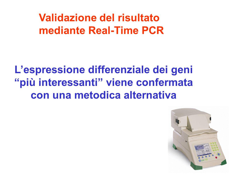 L'espressione differenziale dei geni più interessanti viene confermata con una metodica alternativa Validazione del risultato mediante Real-Time PCR