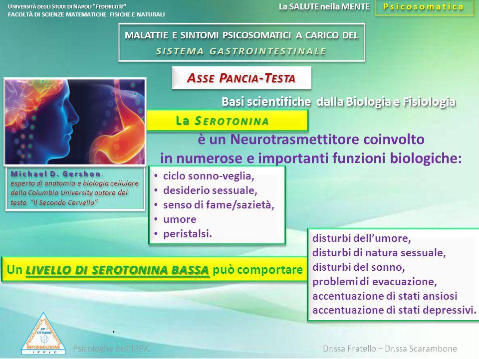 Basi scientifiche dalla Biologia e Fisiologia La S EROTONINA. A SSE P ANCIA -T ESTA è un Neurotrasmettitore coinvolto in numerose e importanti funzion