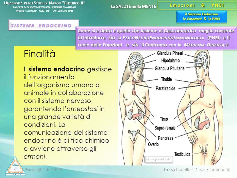 Psicologhe dell'IPPiC Dr.ssa Fratello – Dr.ssa Scarambone il Sistema Endocrino le Emozioni & la PNEI La SALUTE nella MENTE Emozioni & PNEI SISTEMA END
