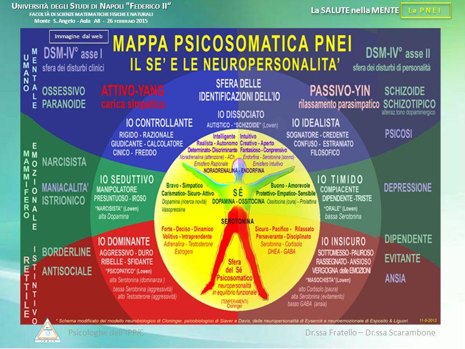 Psicologhe dell'IPPiC Dr.ssa Fratello – Dr.ssa Scarambone La PNEI La SALUTE nella MENTE Immagine dal web U NIVERSITÀ DEGLI S TUDI DI N APOLI