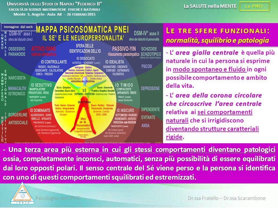 Psicologhe dell'IPPiC Dr.ssa Fratello – Dr.ssa Scarambone La PNEI La SALUTE nella MENTE area della corona circolare che circoscrive l'area centrale -
