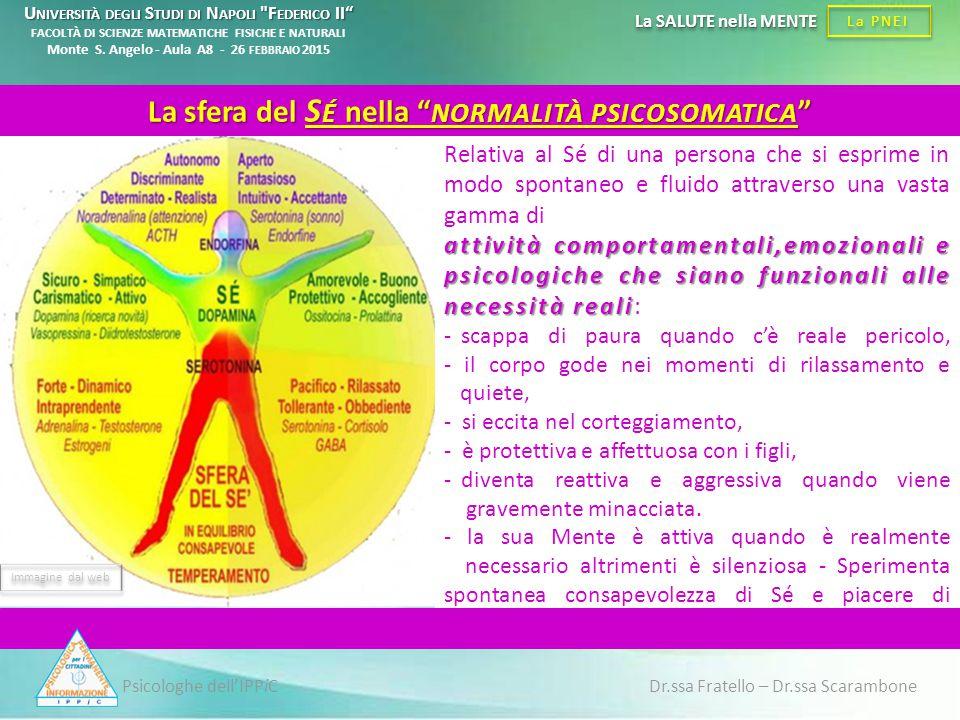 Psicologhe dell'IPPiC Dr.ssa Fratello – Dr.ssa Scarambone La PNEI La SALUTE nella MENTE Relativa al Sé di una persona che si esprime in modo spontaneo