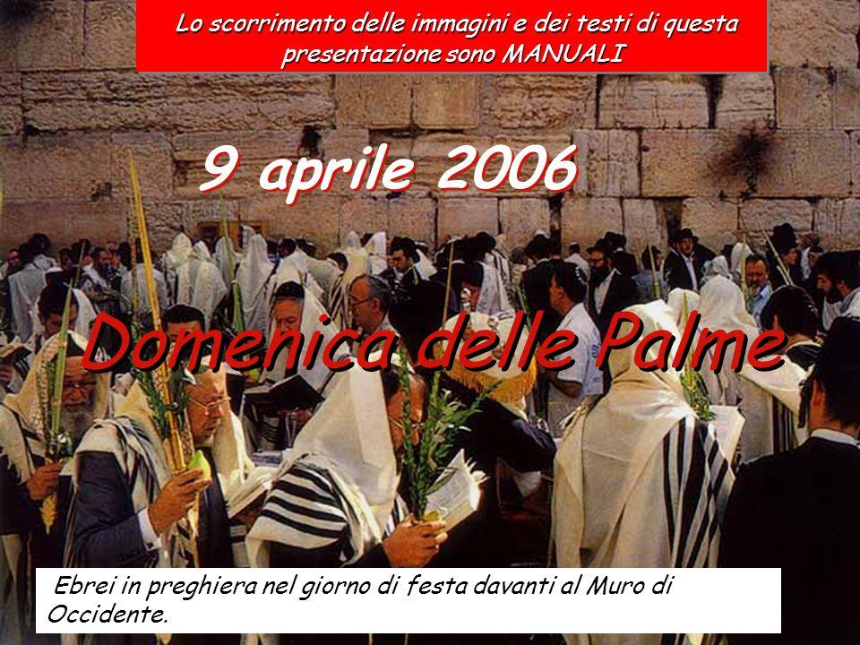 9 aprile 2006 Domenica delle Palme Ebrei in preghiera nel giorno di festa davanti al Muro di Occidente.