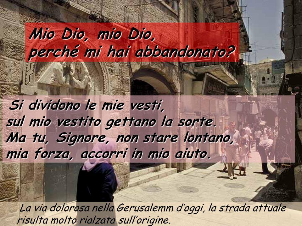 Per questa via dovete passare Gesù prigioniero verso la casa di Anna Mio Dio, mio Dio, perché mi hai abbandonato.