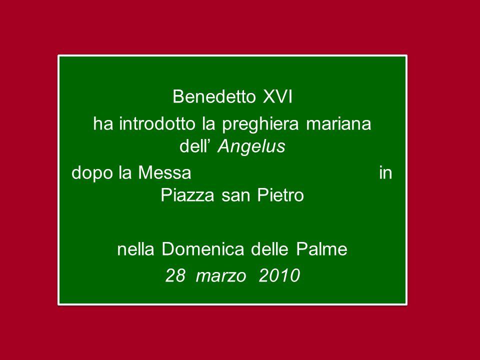 Benedetto XVI ha introdotto la preghiera mariana dell' Angelus dopo la Messa in Piazza san Pietro nella Domenica delle Palme 28 marzo 2010 Benedetto XVI ha introdotto la preghiera mariana dell' Angelus dopo la Messa in Piazza san Pietro nella Domenica delle Palme 28 marzo 2010