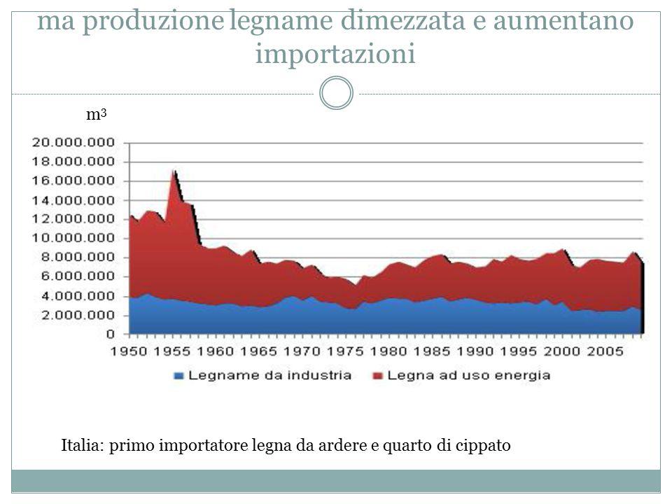 ma produzione legname dimezzata e aumentano importazioni Italia: primo importatore legna da ardere e quarto di cippato m3m3