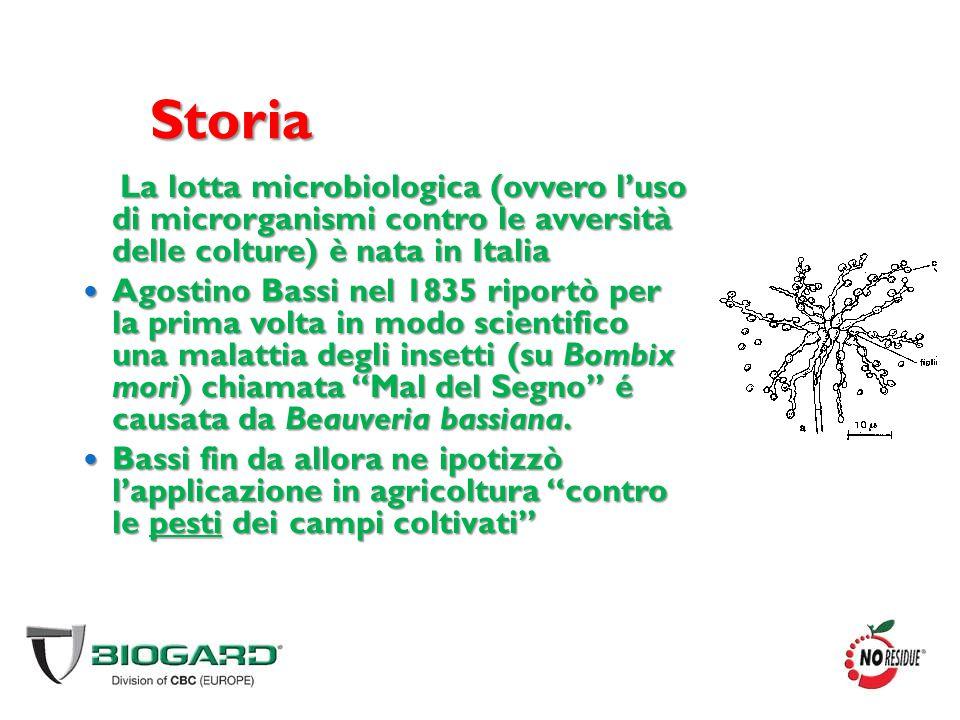 Storia La lotta microbiologica (ovvero l'uso di microrganismi contro le avversità delle colture) è nata in Italia Agostino Bassi nel 1835 riportò per