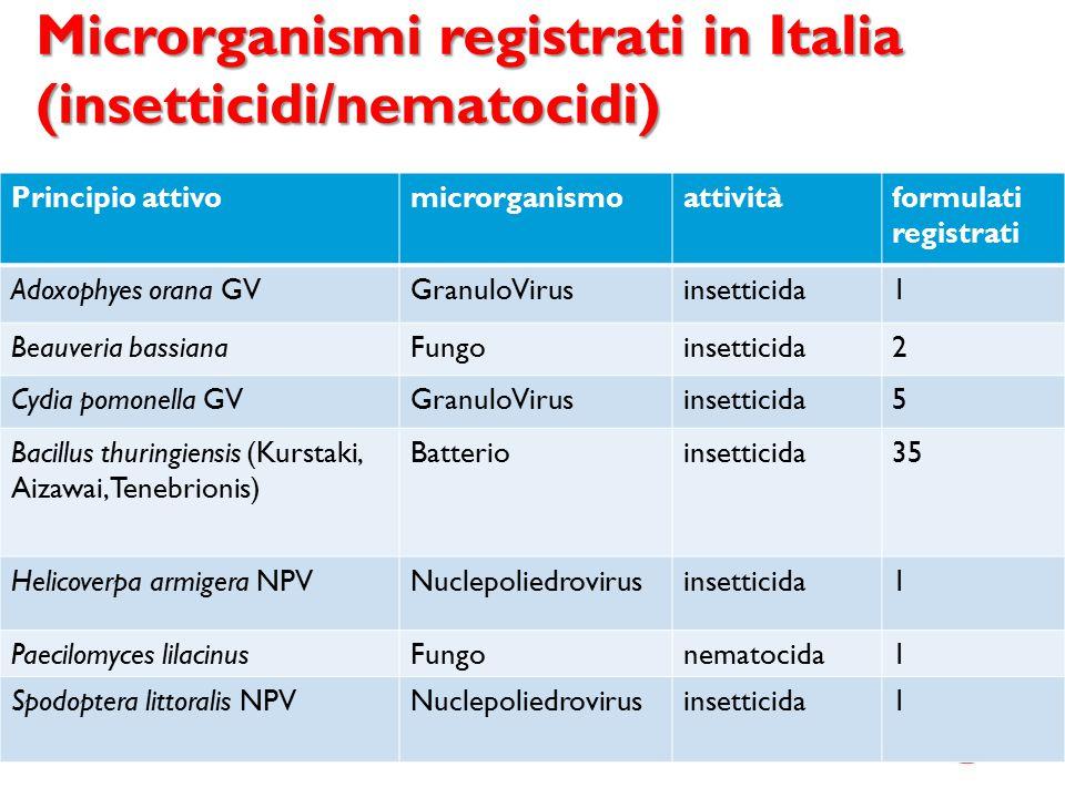Microrganismi registrati in Italia (insetticidi/nematocidi) Principio attivomicrorganismoattivitàformulati registrati Adoxophyes orana GVGranuloVirusi