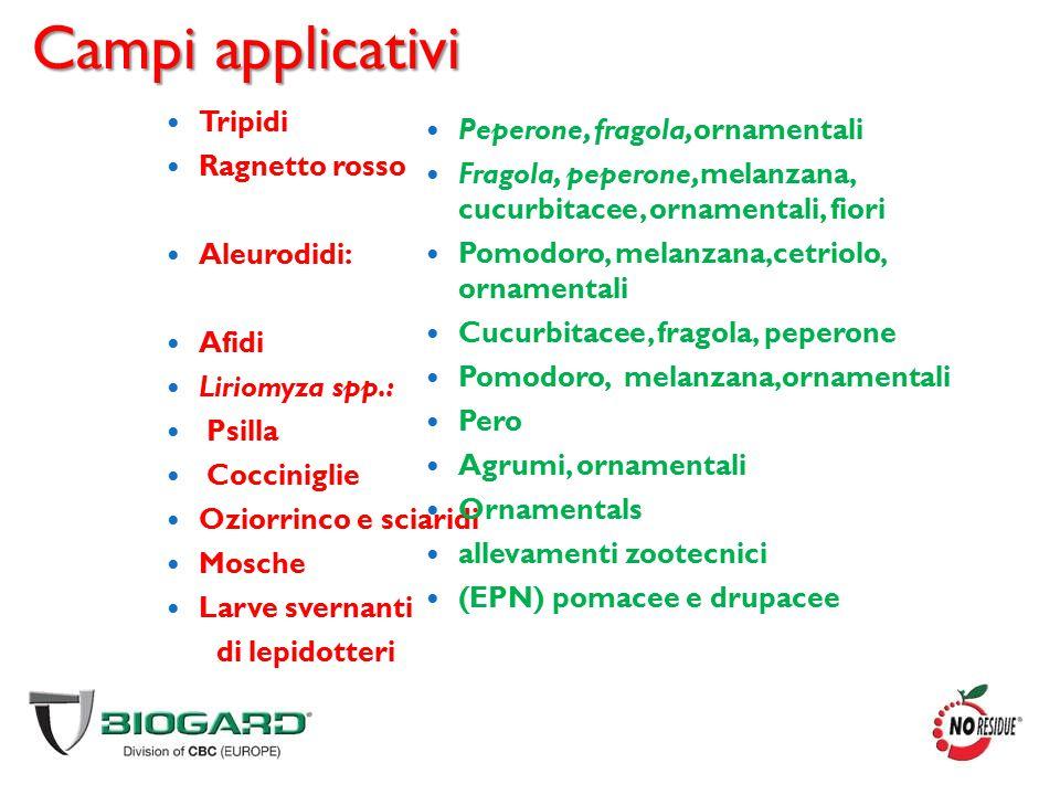 Campi applicativi Tripidi Ragnetto rosso Aleurodidi: Afidi Liriomyza spp.: Psilla Cocciniglie Oziorrinco e sciaridi Mosche Larve svernanti di lepidott