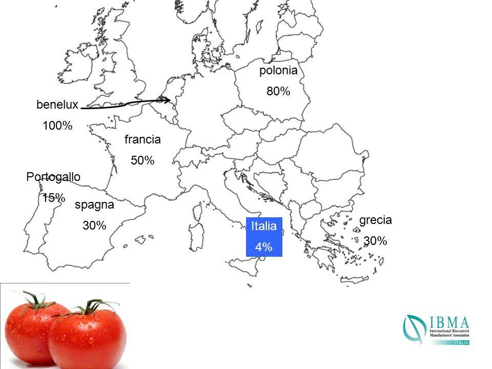 benelux 100% Portogallo 15% spagna 30% Italia 4% grecia 30% polonia 80% francia 50%