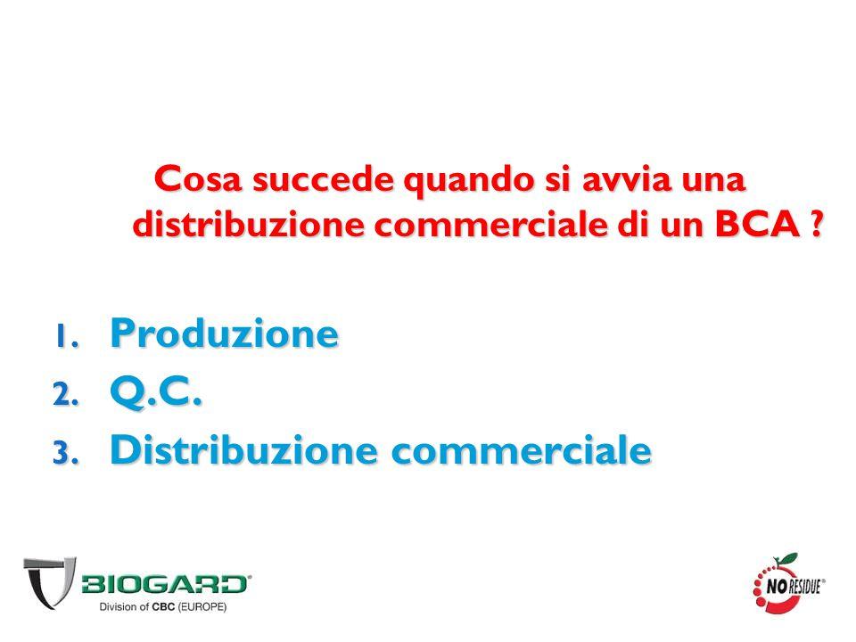Cosa succede quando si avvia una distribuzione commerciale di un BCA ? 1. Produzione 2. Q.C. 3. Distribuzione commerciale