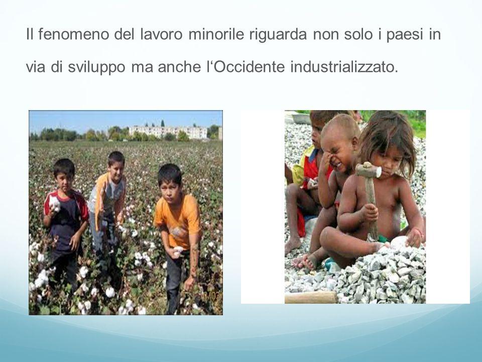 Il fenomeno del lavoro minorile riguarda non solo i paesi in via di sviluppo ma anche l'Occidente industrializzato.