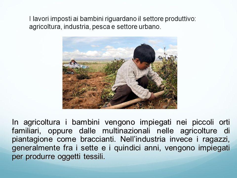 In agricoltura i bambini vengono impiegati nei piccoli orti familiari, oppure dalle multinazionali nelle agricolture di piantagione come braccianti. N