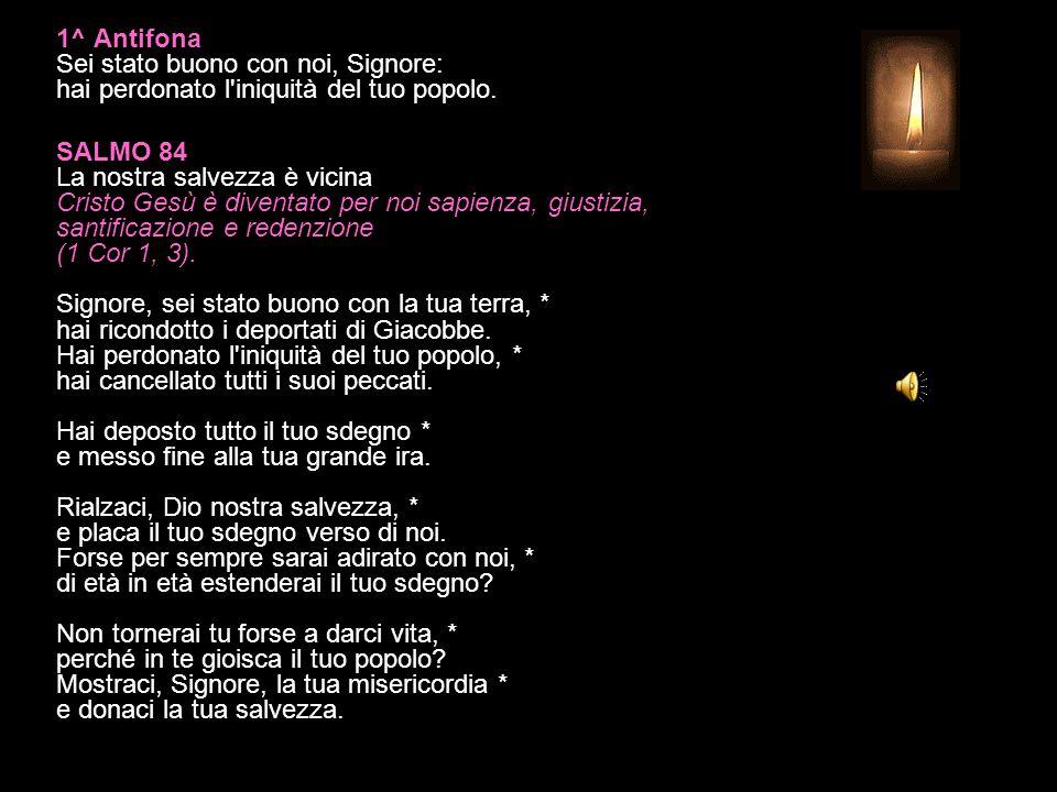 16 DICEMBRE 2014 MARTEDÌ - III SETTIMANA DI AVVENTO LODI V.