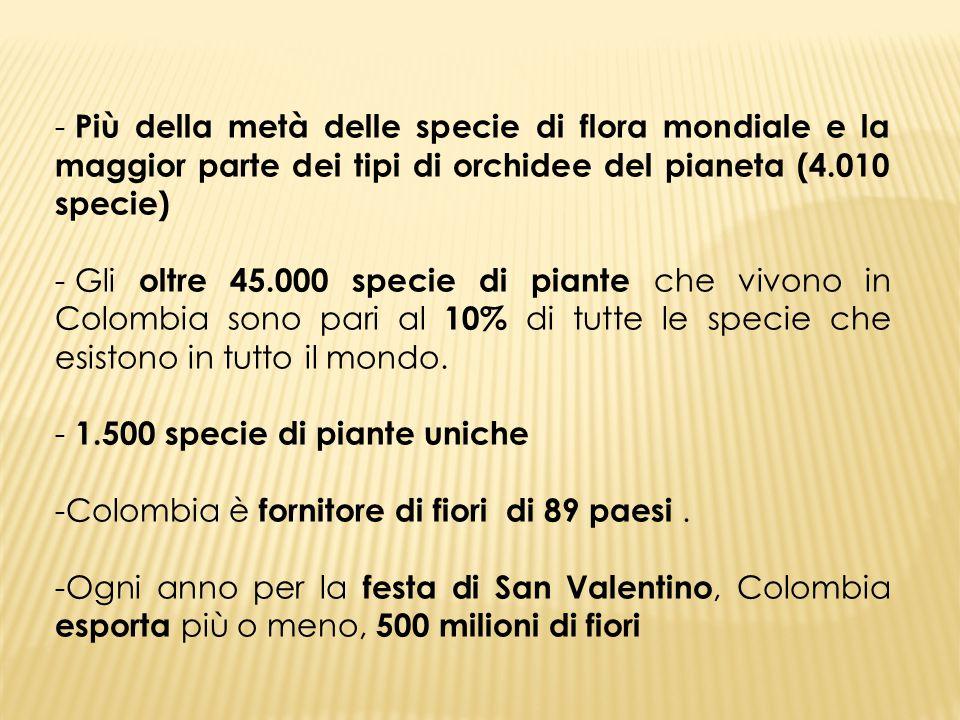 - Più della metà delle specie di flora mondiale e la maggior parte dei tipi di orchidee del pianeta (4.010 specie) - Gli oltre 45.000 specie di piante