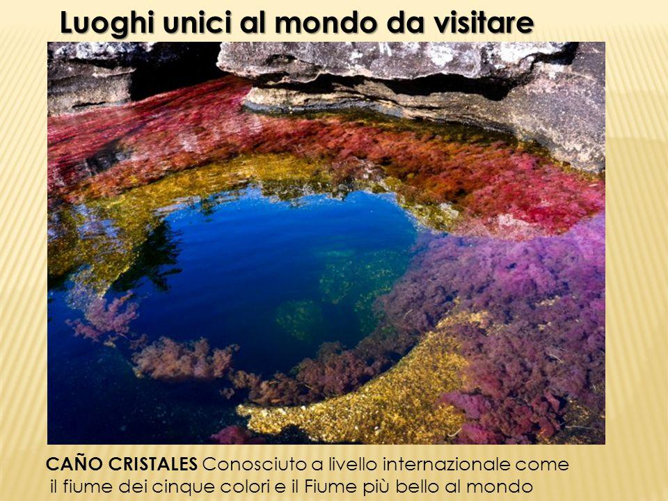 Luoghi unici al mondo da visitare CAÑO CRISTALES Conosciuto a livello internazionale come il fiume dei cinque colori e il Fiume più bello al mondo