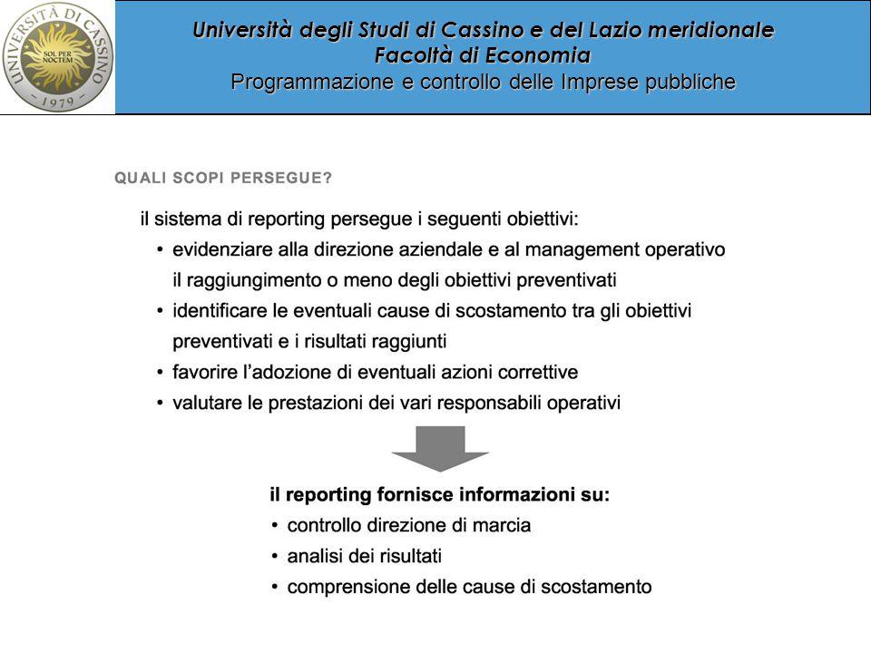 Università degli Studi di Cassino e del Lazio meridionale Facoltà di Economia Programmazione e controllo delle Imprese pubbliche