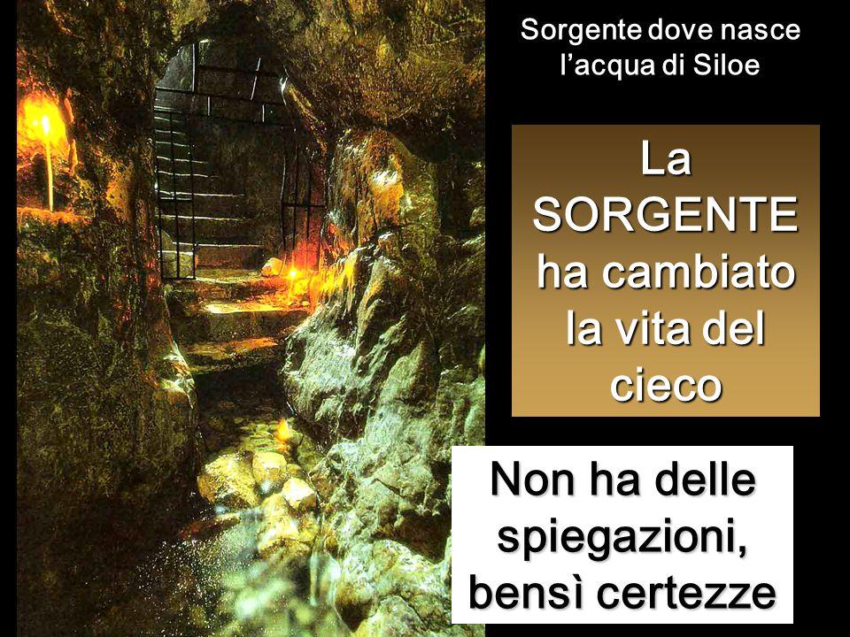 La SORGENTE ha cambiato la vita del cieco Non ha delle spiegazioni, bensì certezze Sorgente dove nasce l'acqua di Siloe