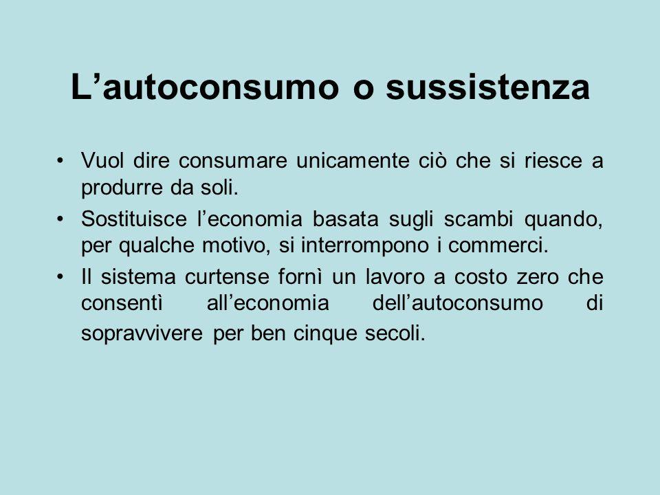L'autoconsumo o sussistenza Vuol dire consumare unicamente ciò che si riesce a produrre da soli. Sostituisce l'economia basata sugli scambi quando, pe