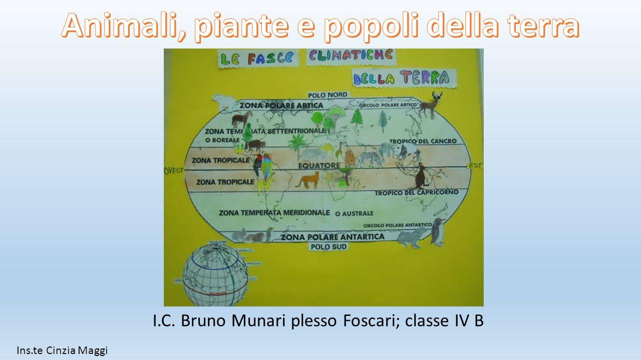 I.C. Bruno Munari plesso Foscari; classe IV B Ins.te Cinzia Maggi
