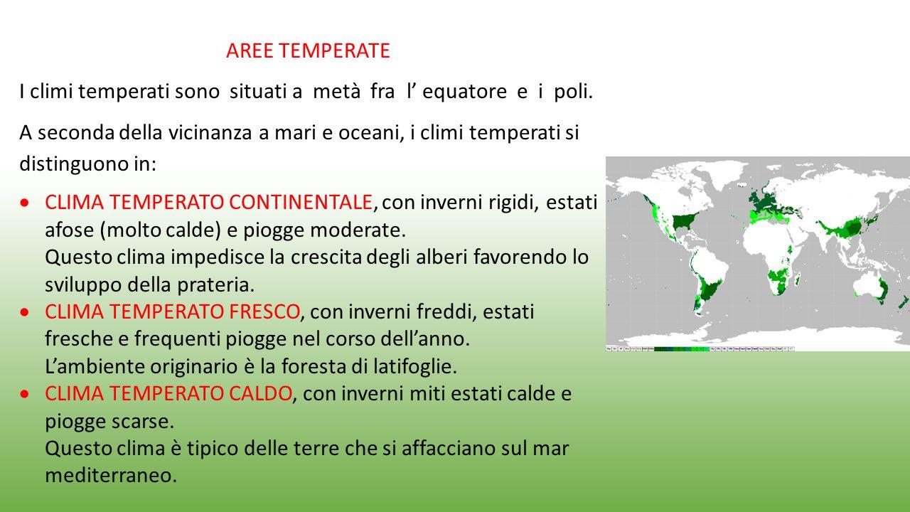 AREE TEMPERATE I climi temperati sono situati a metà fra l' equatore e i poli. A seconda della vicinanza a mari e oceani, i climi temperati si disting