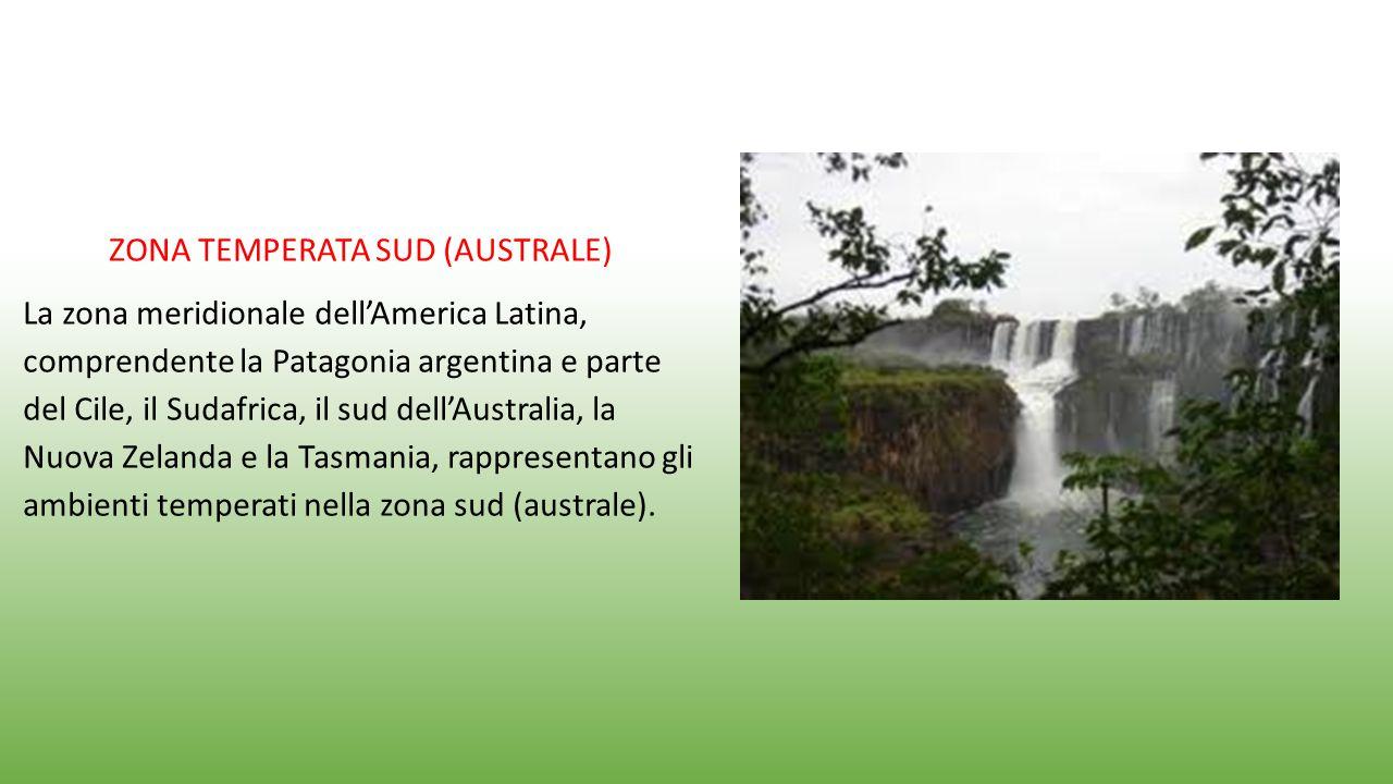 ZONA TEMPERATA SUD (AUSTRALE) La zona meridionale dell'America Latina, comprendente la Patagonia argentina e parte del Cile, il Sudafrica, il sud dell